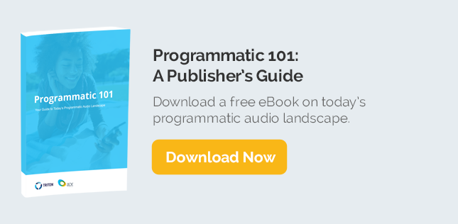 eBook-Programmatic-101